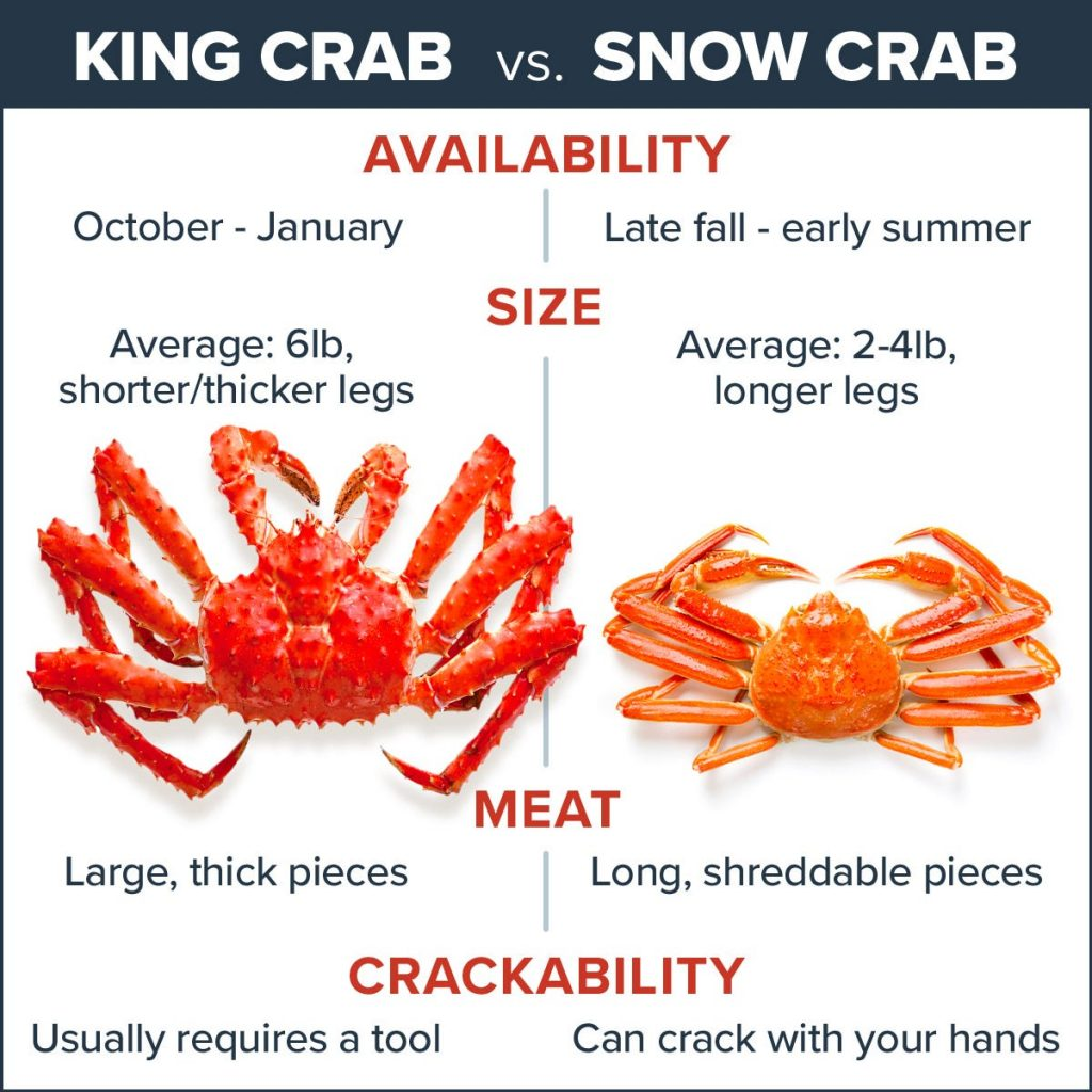 chart with text information on king crab vs. snow crab from Maine Lobster Now